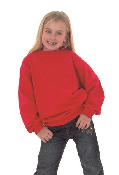 Picture of Childrens Sweatshirt