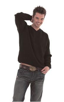 Picture of Premium V-Neck Sweatshirt