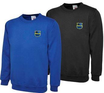 Picture of Solihull Sporting FC kids sweatshirt (Boys & Girls)
